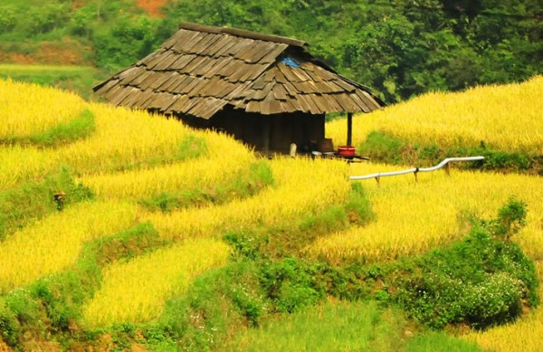 Sapa interesting tour 2 days 3 nights