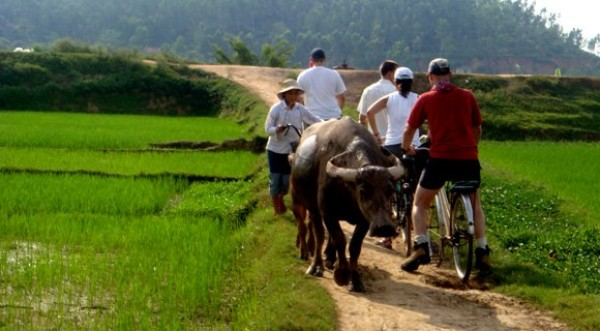 Nha Trang Countryside tours full day