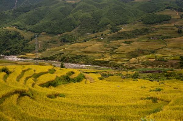 Interesting trek through Hoang Lien National Park & villages