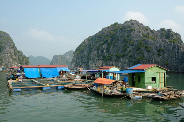 Hanoi - Halong bay full day
