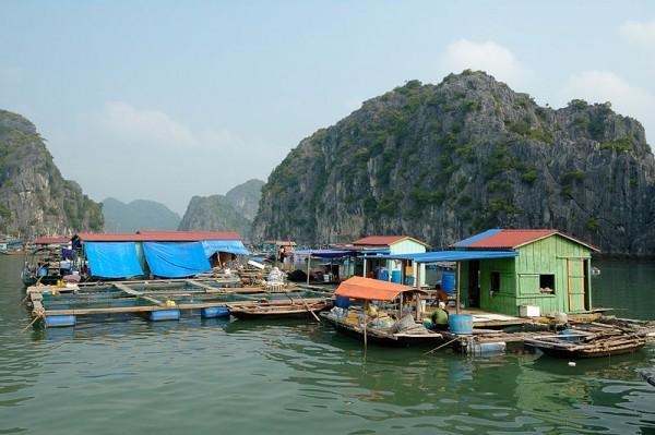 Hanoi - Halong bay full day
