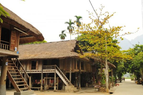 Hanoi-Halong bay-Mai Chau valley-Bai Dinh & Trang An-7D6N