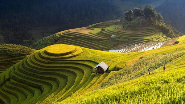 Sapa interesting tour by bus and train